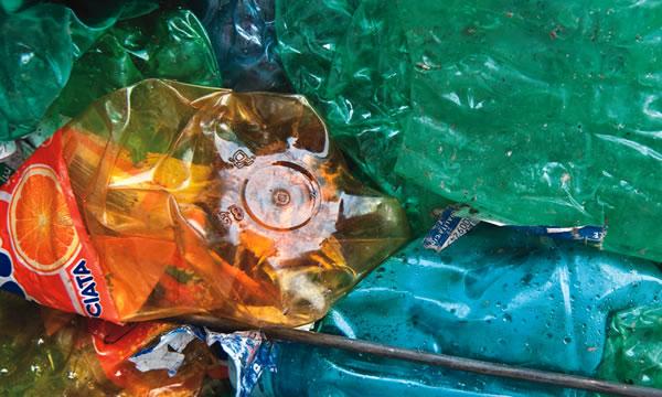 differenziata dei rifiuti marini. l'esempio acciaroli
